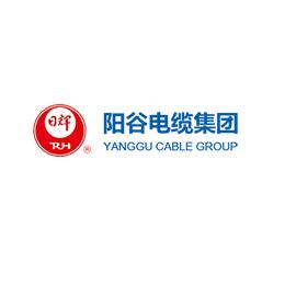 阳谷电缆集团